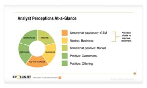 analyst perception audit